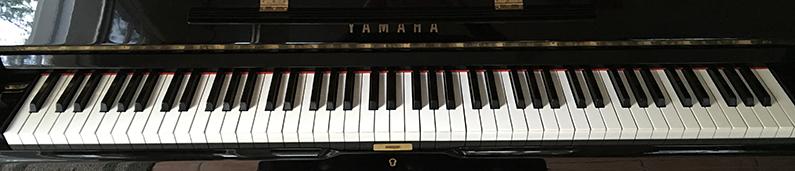 keyboard-IMG_0608